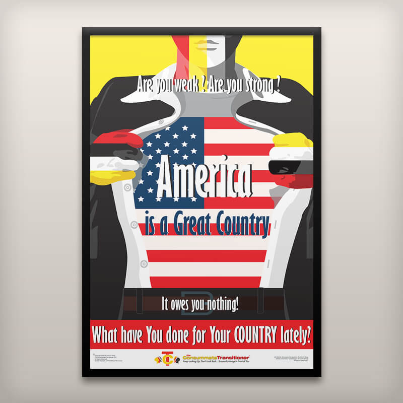 America Is a Great Country Poster